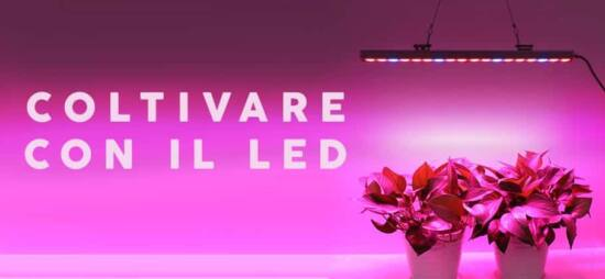 coltivare growbox led