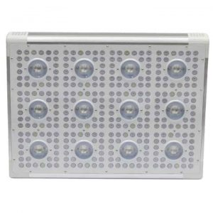 dimmer 12 led cob lamp