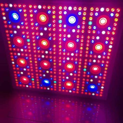 lamp dimmer 16 light front