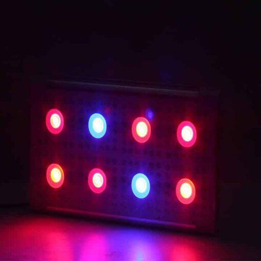 dimmer 8 cob lamp