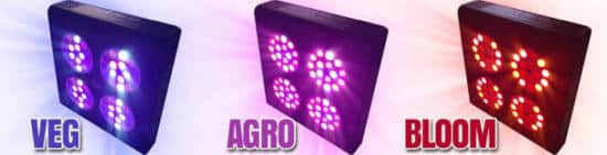 apollo pro v3 illuminazione veg agro bloom