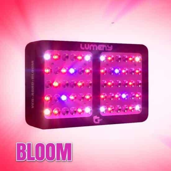 Lumeny Bloom mode