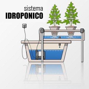 sistema coltivazione idroponica