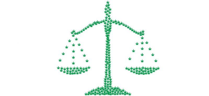 Corte costituzionale, sentenza sulla cannabis